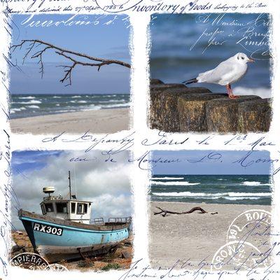 collage-8-jpg