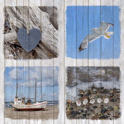 collage-9-jpg-1