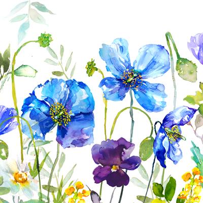blue-poppy-s-floral-2-jpg