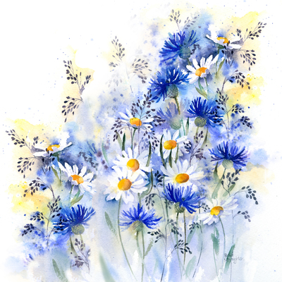 daisies-and-cornflowers-copy-jpg
