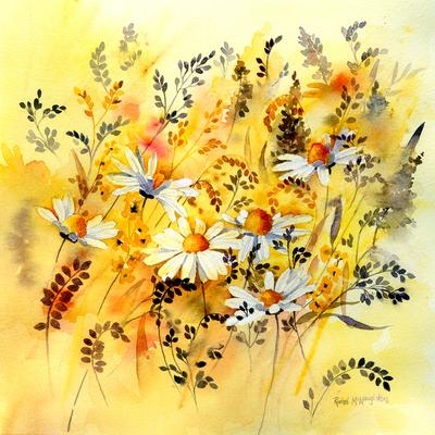 daisy-meadow-jpg