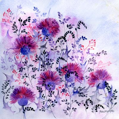 thistle-meadow-jpg