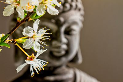 buddha-04-12-004-jpg