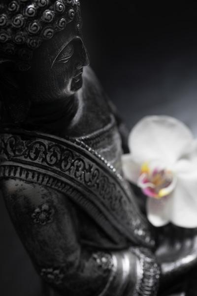 buddha-11-17-008-jpg