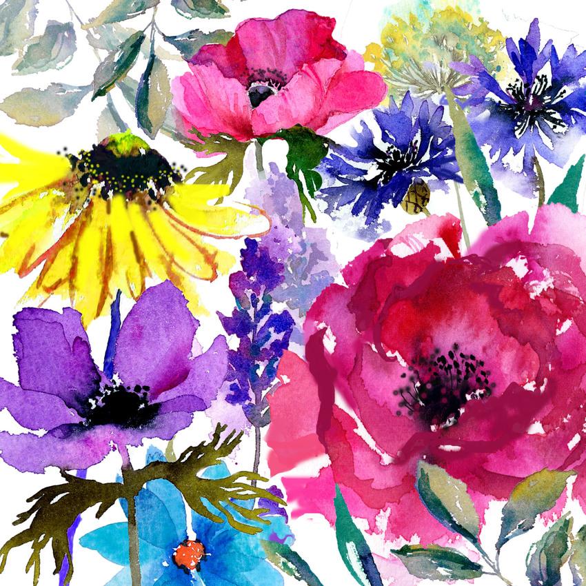 Flower Burst 3.jpg