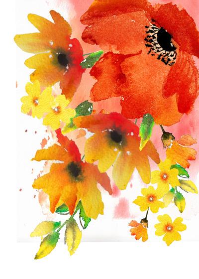 poppy-splash-jpg