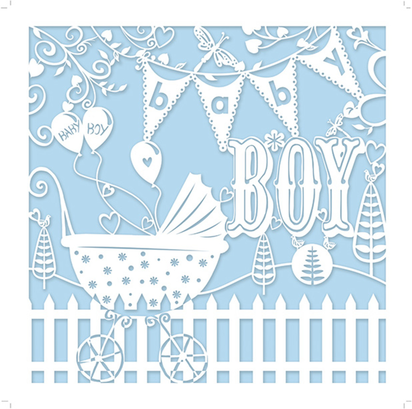 MHC_baby_boy_pram_newborn.jpg