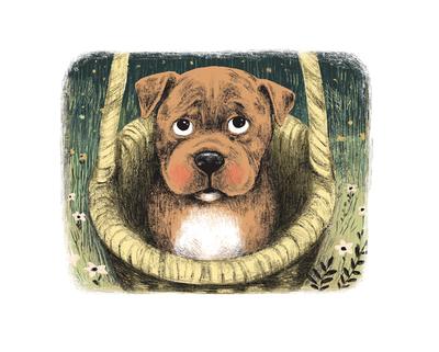 puppy-basket-flowers-jpg