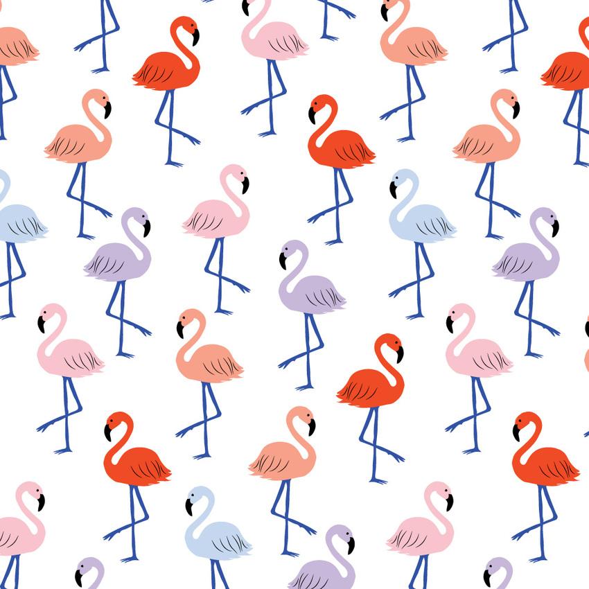 KatKalindi_petite_flamingo.jpg