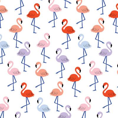 katkalindi-petite-flamingo-jpg