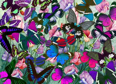butterflies-jigsaw-small-size-fiona-osbaldstone-jpg
