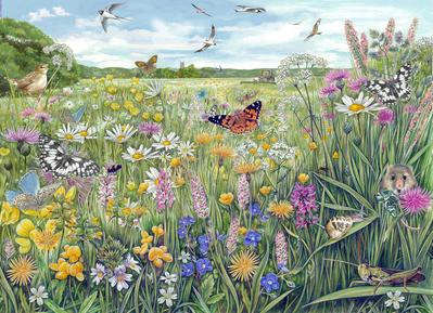 meadow-jigsaw-small-size-fiona-osbaldstone-jpg
