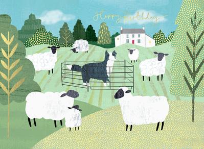 sheep-jpg-10
