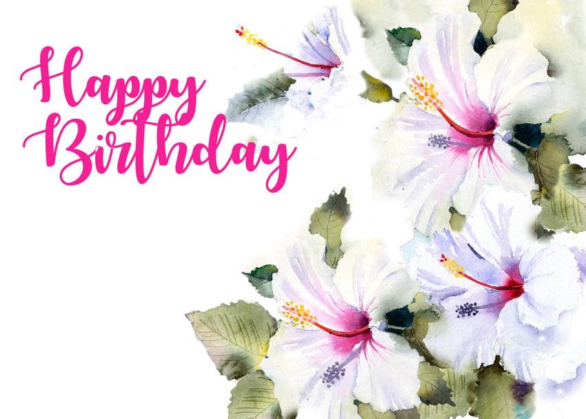 Hibiscus birthday.jpg