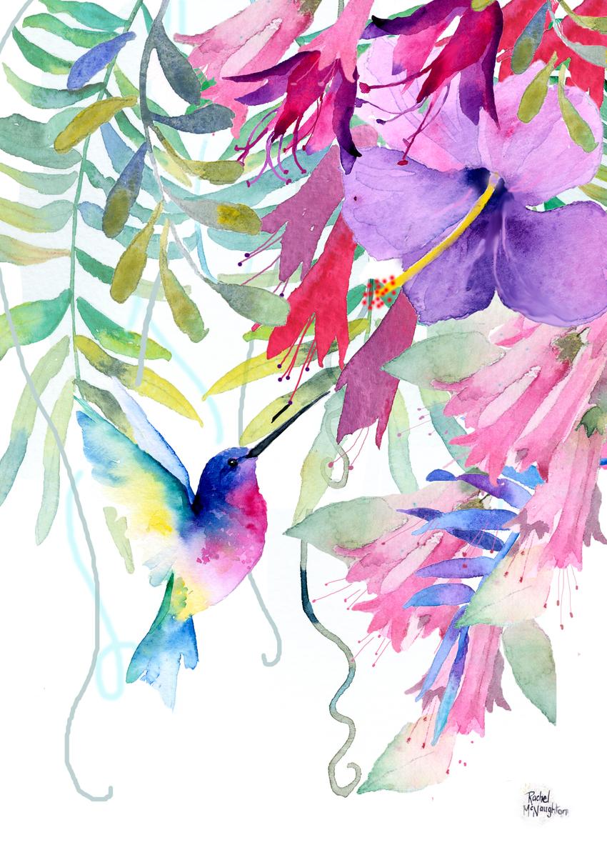 Tropical hummingbird 1.jpg