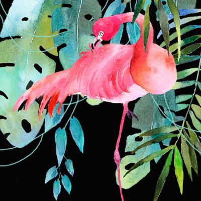advocateart-rachel-mcn-brazilbrief-flamingo-jpg