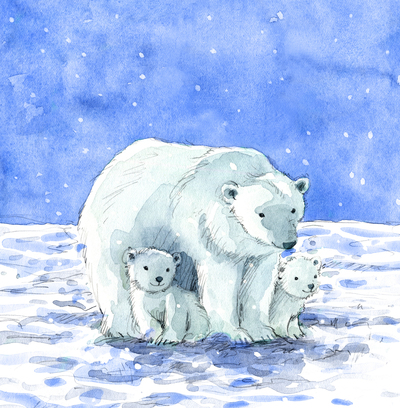 estelle-corke-christmas-snow-polar-bear-family-jpg