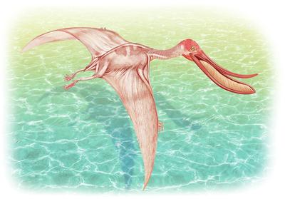 slongo-dinos1-jpg
