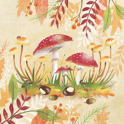 autumn-fall-fly-agaric-napkin-toadstool-mushroom-leaves-conkers-berries-jpg