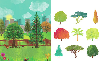 magic-and-mystery-of-tress-types-of-trees-spread-jpg