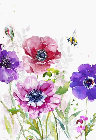 mixed-coloured-anemones-3-jpg