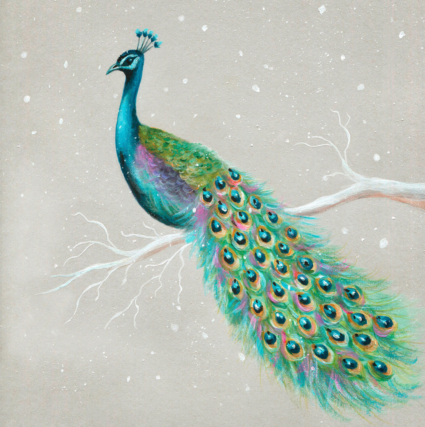 peacock christmas snow.jpeg