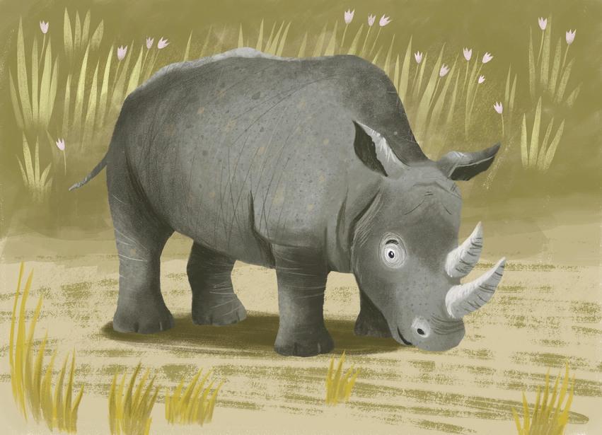 sylwia_filipczak_rhinoceros.jpg