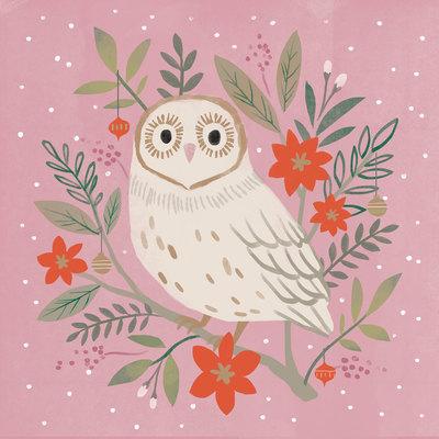pm-owl-jpg