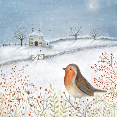 christmas-robin-house-snow-moon-jpg