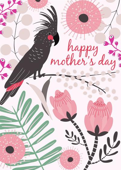 black-cockatoos-mothersday-cw2-01-jpg