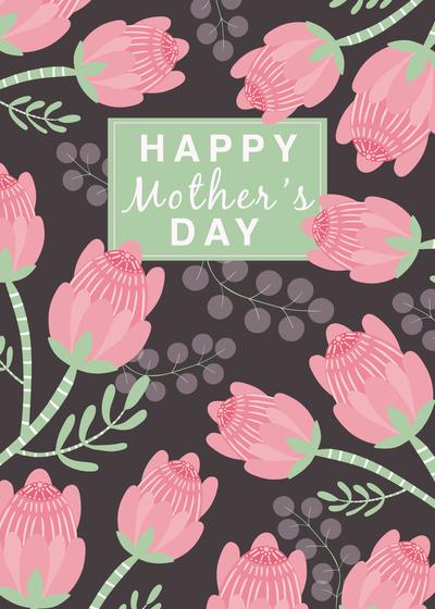 black-cockatoos-mothersday-cw2-02-jpg