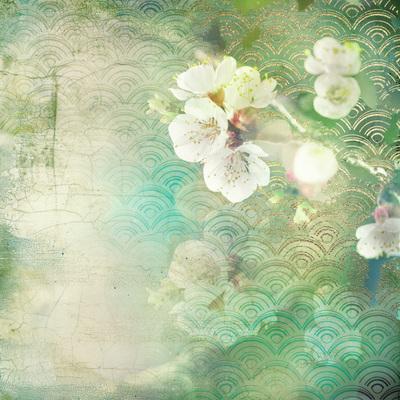lsk-satori-living-cherry-blossom-jpg