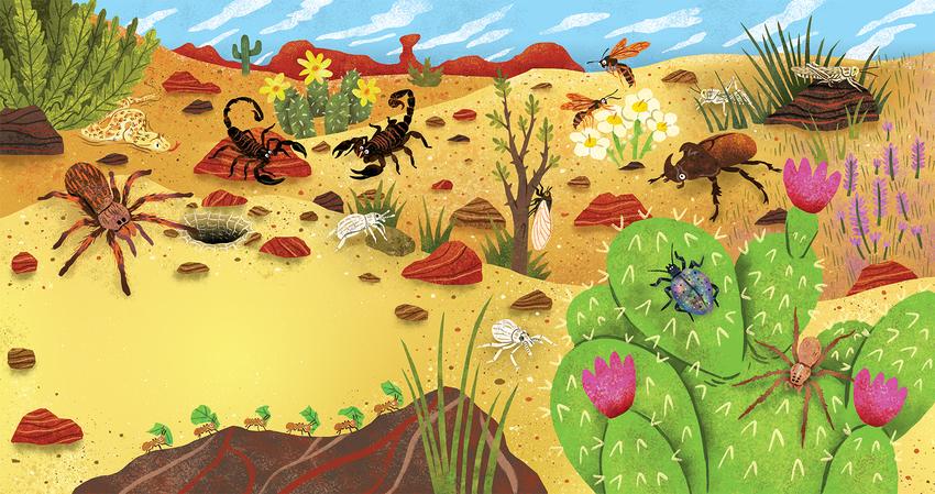 Desert_Bugs_Insects_Spider_Cactus_Snake.jpg
