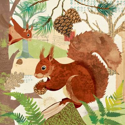 red-squirrels-jpg