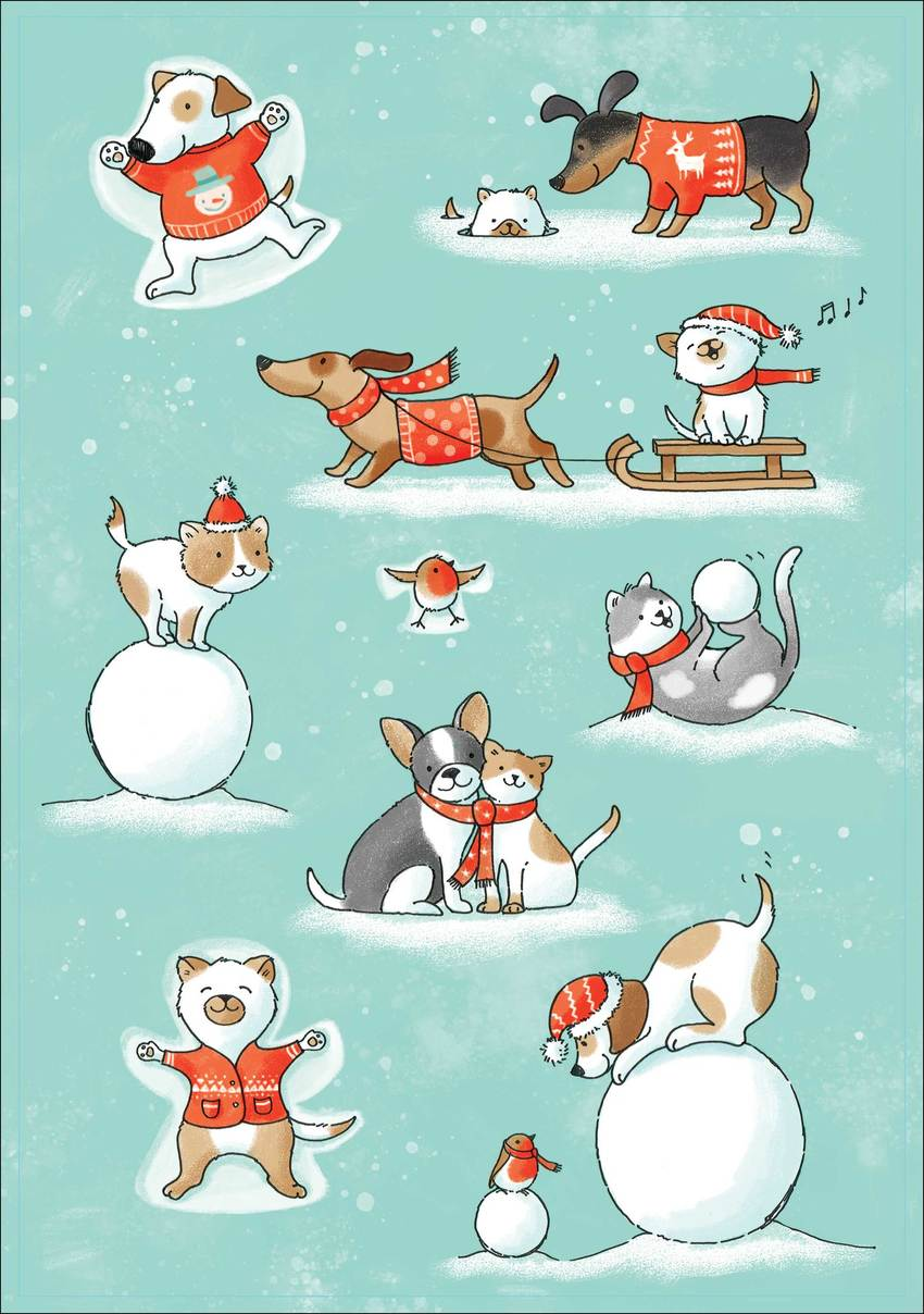 Cats and dogs in the snow.jpg
