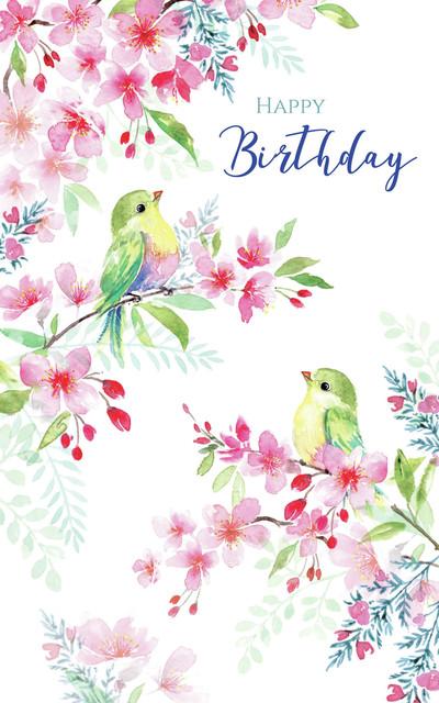 00347-dib-blossom-birds-jpg