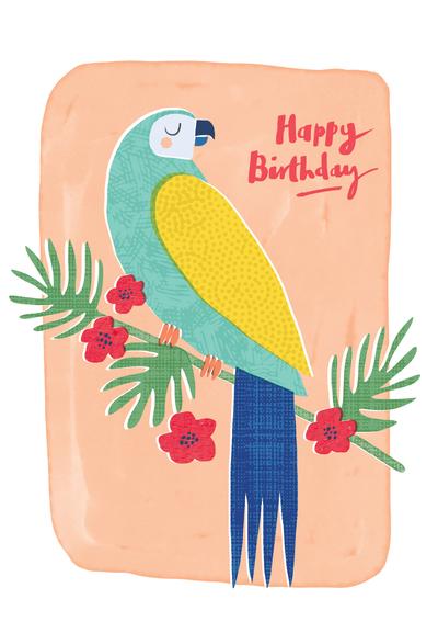 macaw-jpg