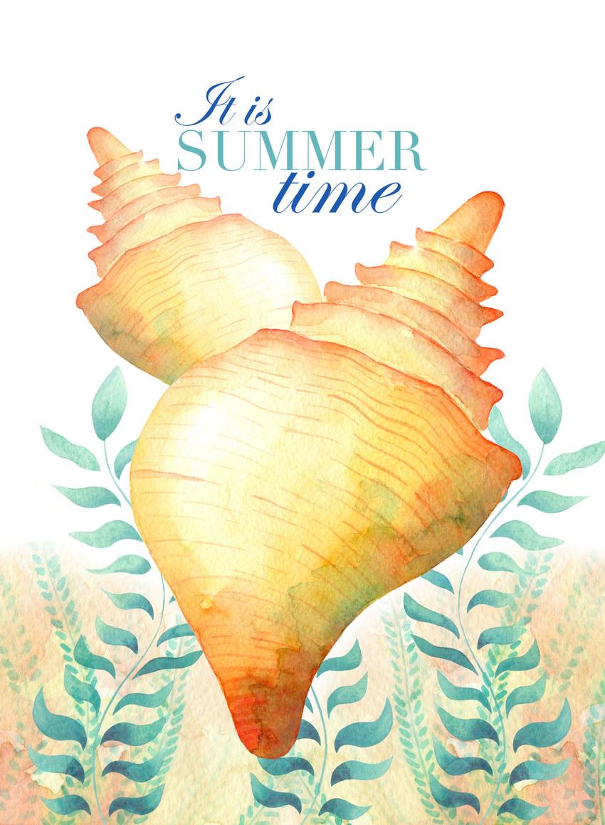 LauGzz_Summer_card_shells1.jpg