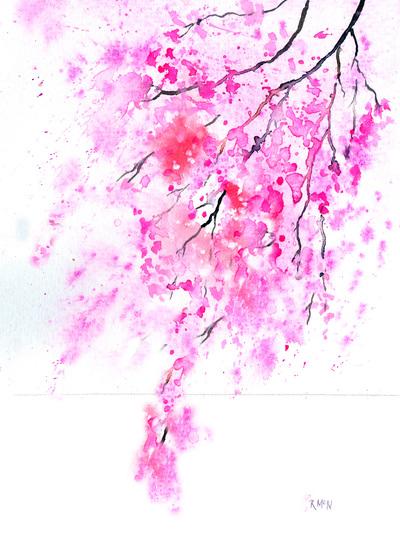 cherry-blossom-jpg-2