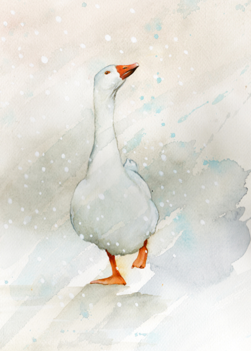 goose_snow_farmyard_small.jpg