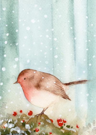 robin-small-jpg