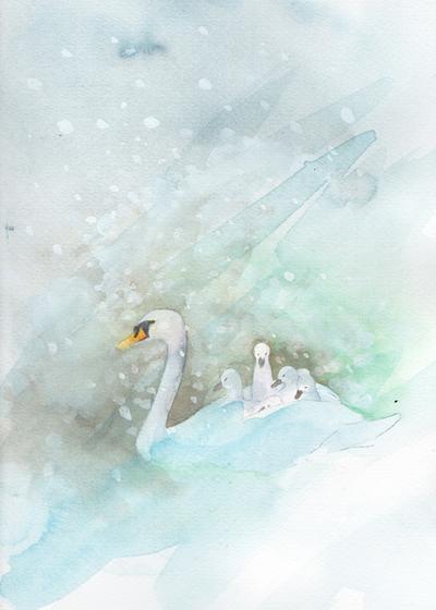 swan-cygnets-snow-small-jpg