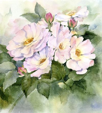 roses-jpg-9