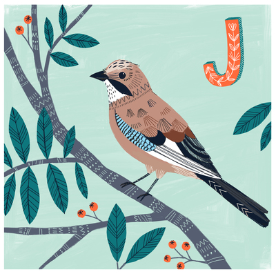 bethanjanine-bird-jay-abc-jpg