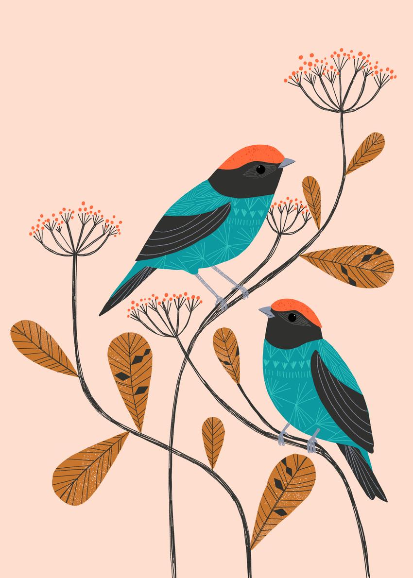 BethanJanine_BlueManakin_Birds_Nature.jpg