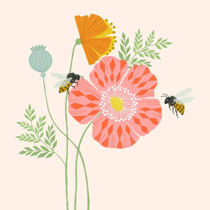 BethanJanine_Poppy_Bees_Floral.jpg