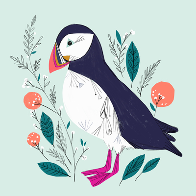 bethanjanine-puffin-bird-jpg