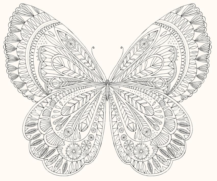 BethanJanine_Book_Colouring_Butterfly.jpg