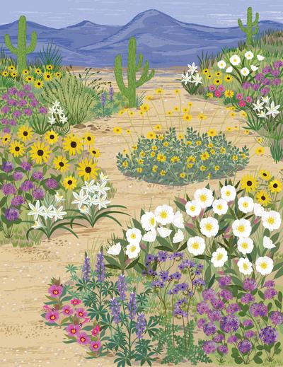 bethanjanine-book-desert-floral-jpg