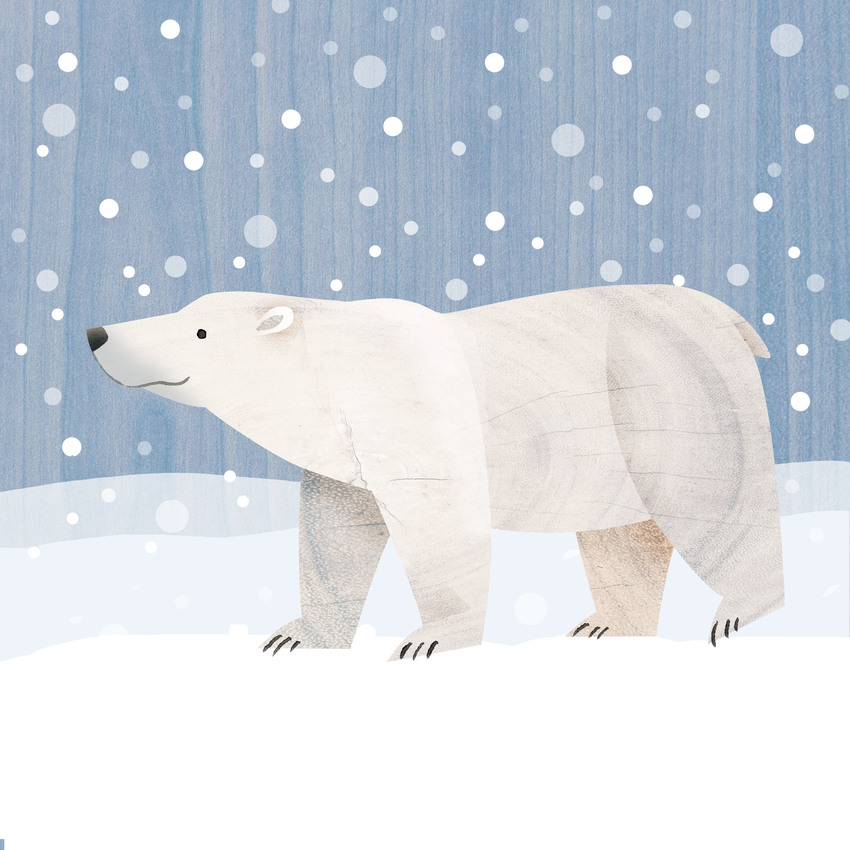 hwood polar bear card b.jpg
